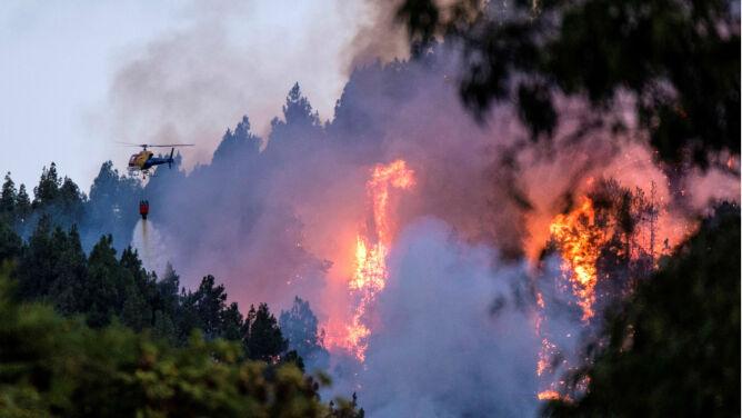 Pożar na Gran Canarii. <br />Ewakuowano ponad 2000 osób