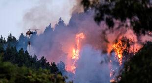Gran Canaria w ogniu