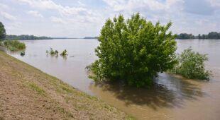 Mieszkaniec Dobrzykowa o powodziach