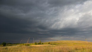 """Prognoza pogody na jutro: """"jeżeli zobaczycie czarne chmury, szukajcie schronienia"""""""